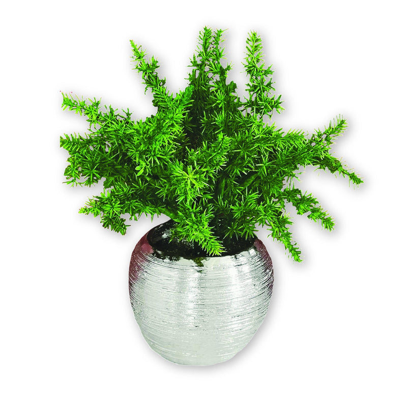 Artificial Plant in Ceramic Chrome Plated Pot - Magasins Hart | Hart Stores