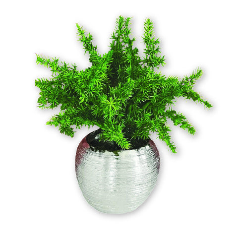 Artificial Plant in Ceramic Chrome Plated Pot