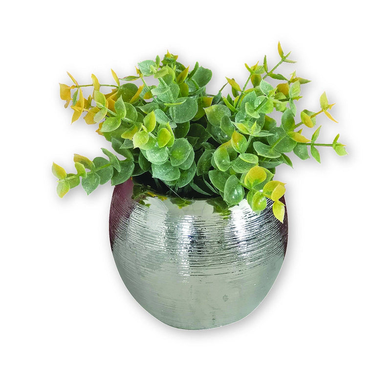 Artificial Boxwood Plant in Ceramic Chrome Plated Pot - Magasins Hart | Hart Stores