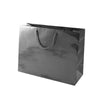 13 x 5 x 10 Black Gloss Eurototes 100/Case
