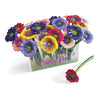 Pansy Ballpoint Pen Display (includes acrylic display holder) Black Ink, 6 Pansy Colors, 24 pens/display