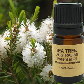 Tea Tree Essential Oil (AAA Australian)