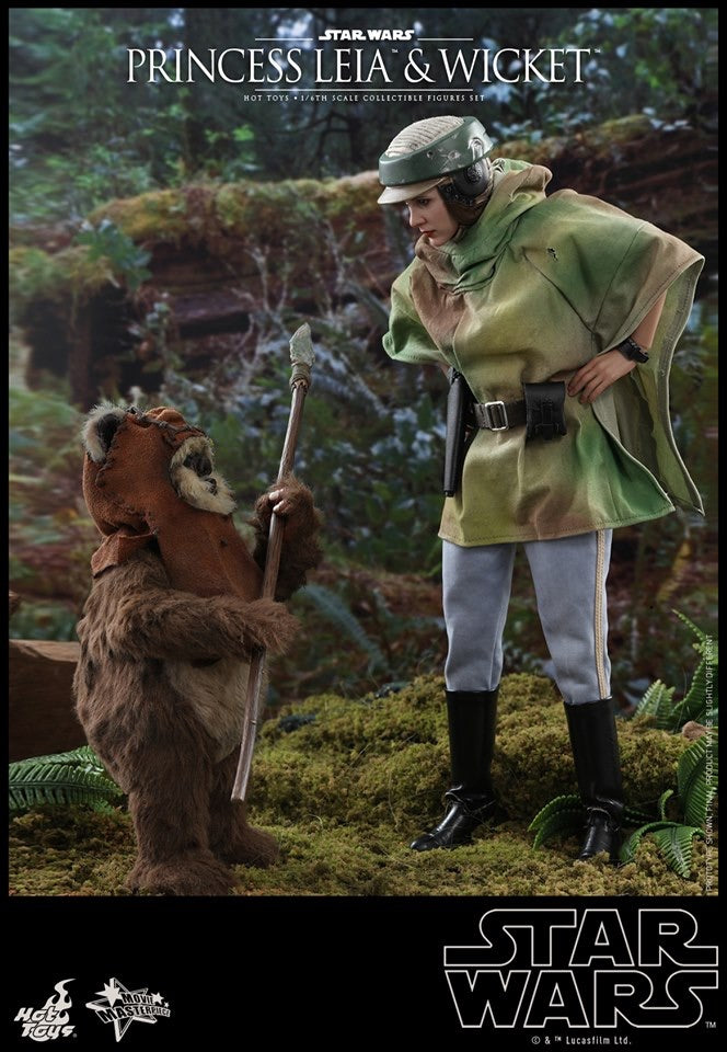 Hot Toys Star Wars Return of the Jedi Princess Leia and Wicket 1/6 Scale Collectible Figure