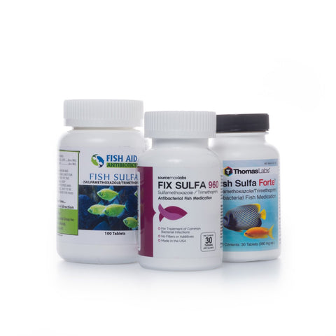 Fish Sulfamethoxazole