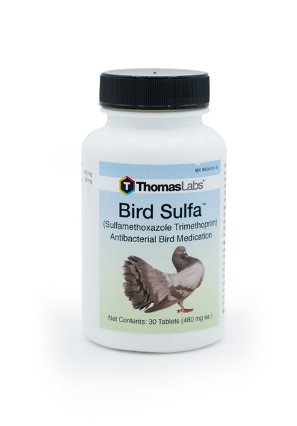 Thomas Labs Bird Sulfa 480mg