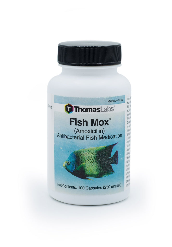 Fish Mox (Amoxicillin) 250mg - 100 Count - FishPharm.com