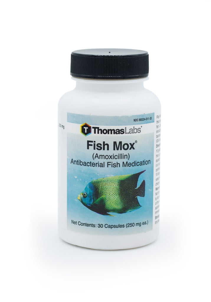Fish Mox (Amoxicillin) 250mg - 30 Count - FishPharm.com