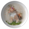 cat plate - Cute Cats Store