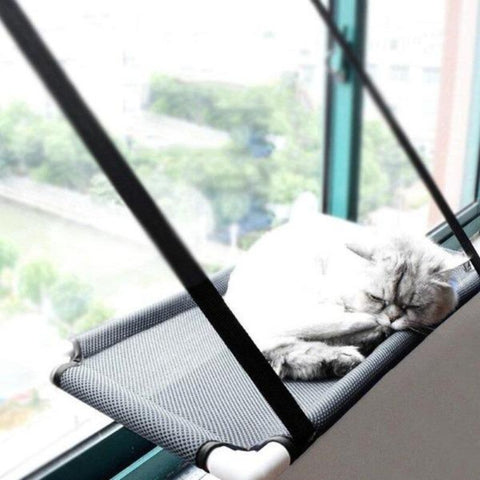 Image of cat window perch - Cute Cats Store