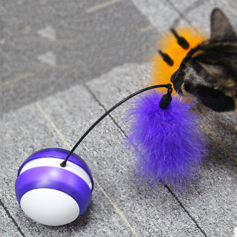 Cat toys - Cute Cats Store