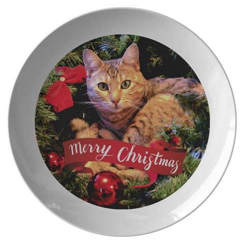 Image of cat dinner plates - Cute Cats Store