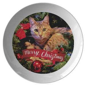 cat dinner plates - Cute Cats Store