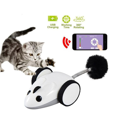 motion activated cat toy - Cute Cats Store