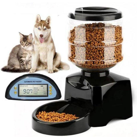 Image of cat feeder - Cute Cats Store