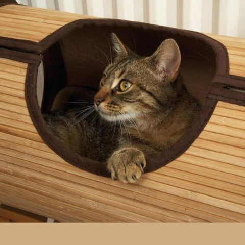 Image of cat bamboo tunnel- Cute Cats Store