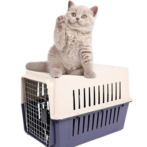 cat carrier - Cute Cats Store