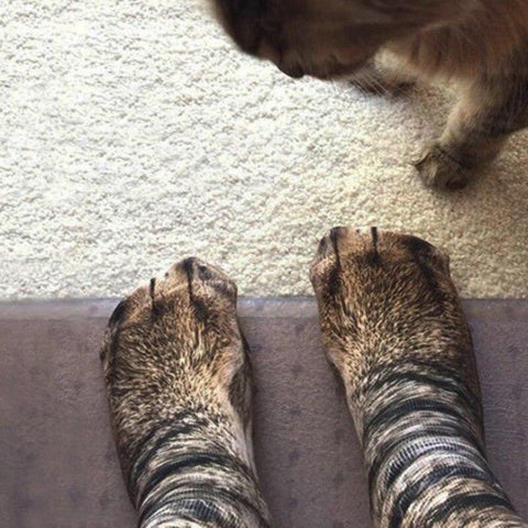 animal paw socks - Cute Cats Store