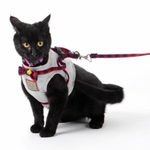 Image of Cat Harness - Cute Cats Store