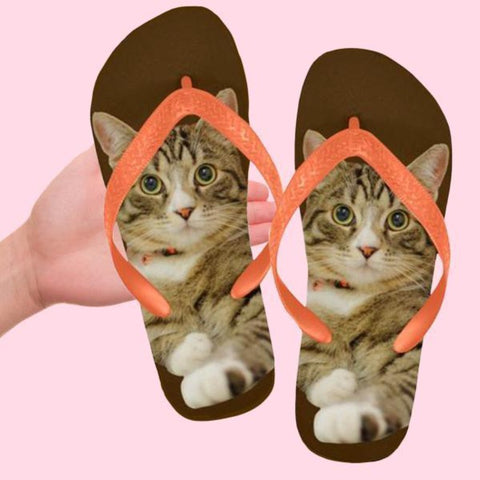 Image of cat lovers shoes - Cute Cats Store