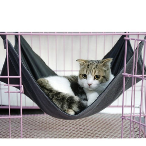 Image of Cat Swing - Cute Cats Store