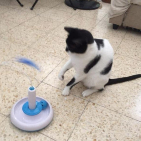 Image of Interactive Cat Toy - Cute Cats Store