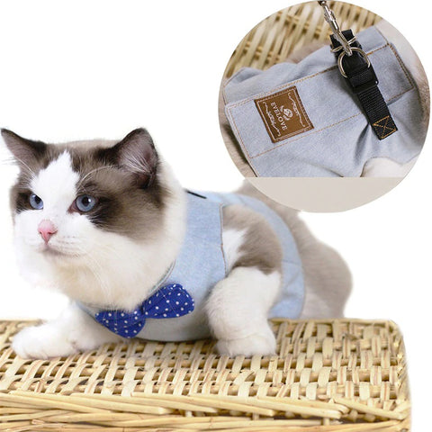 Image of cat harness leash
