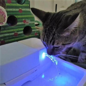 Automatic Cat Fountain - Cute Cats Store