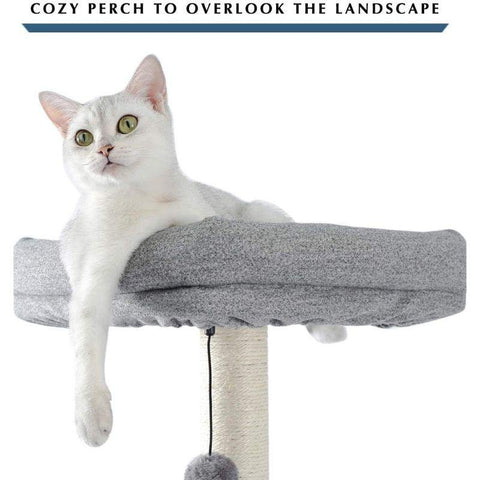 Image of Cat Play House - Cute Cats Store