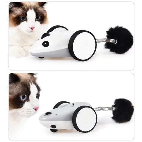 interactive cat toy - Cute Cats Store