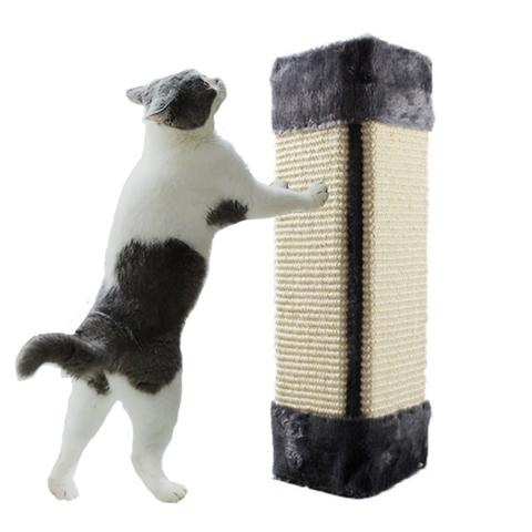 Image of cat scratcher - Cute Cats Store