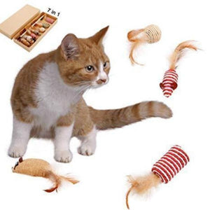 Cat Accessories - Cute Cats Store