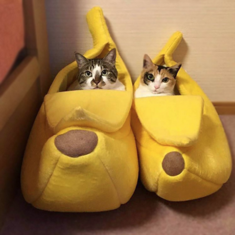 Image of cat banana bed - Cute Cats Store