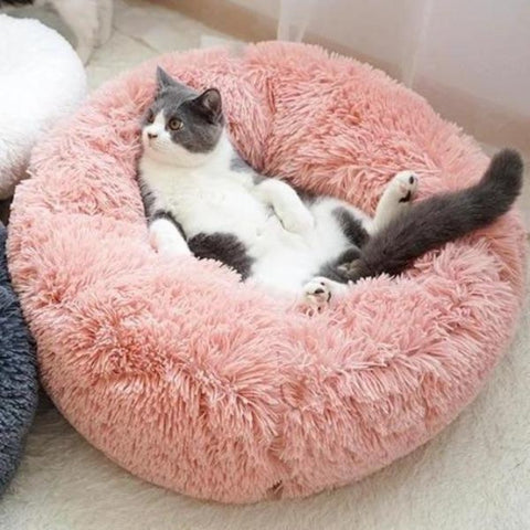 "Image of Cat Bed orchid / 40cm/16"" - Cute Cats Store"