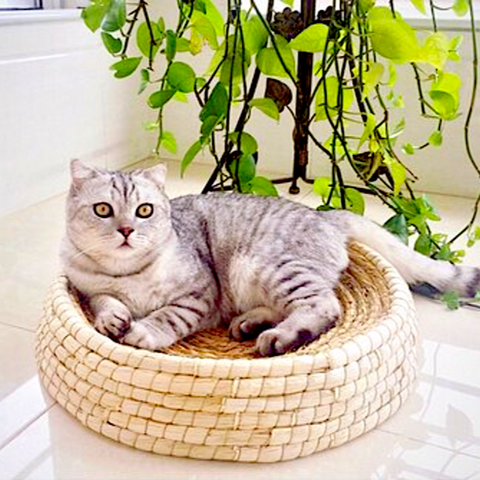 eco-friendly cat bed - Cute Cats Store