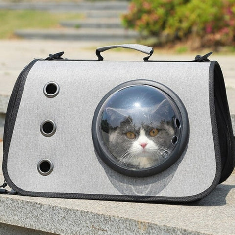 Image of cat carrier bag capsule - Cute Cats Store