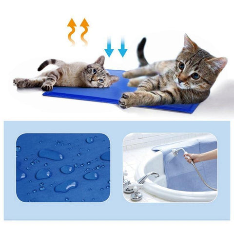 Image of cat mat - Cute Cats Store