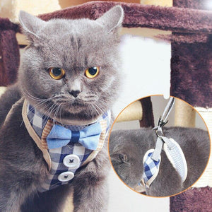 Cat Vest Harness - Cute Cats Store