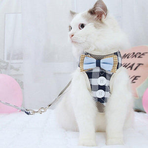 The best cat harnesses - Cute Cats Store