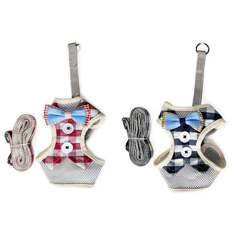 Image of The best cat harnesses - Cute Cats Store