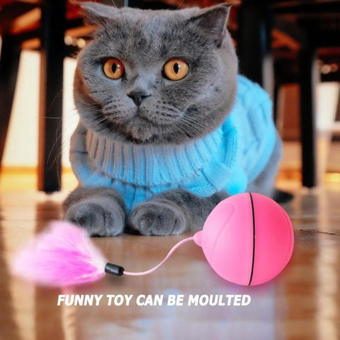 Image of spinning cat ball toy - Cute Cats Store