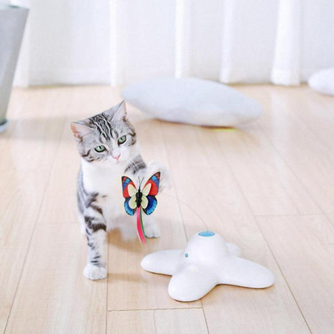 Image of funny cat toys - Cute Cats Store