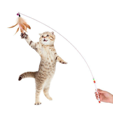 Cat Teaser Feather Wand Interactive Toy - Cute Cats Store