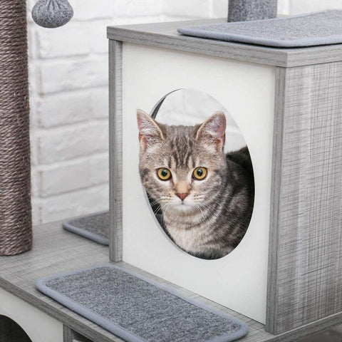 Image of Cat House - Cute Cats Store
