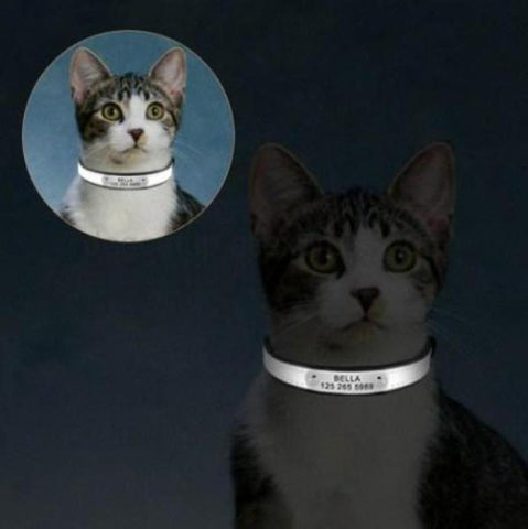 Image of Cat Collar With Name - Cute Cats Store