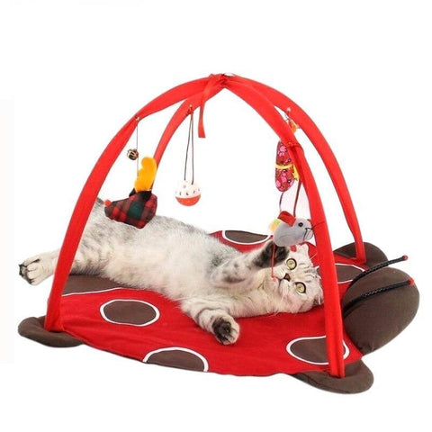 Image of cat play mat - Cute Cats Store
