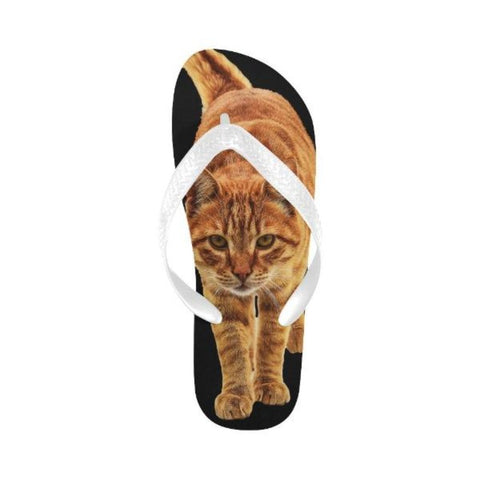 Image of Flip Flops - Cute Cats Store