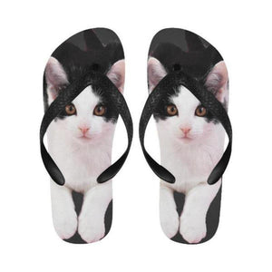 cat flip flops - Cute Cats Store