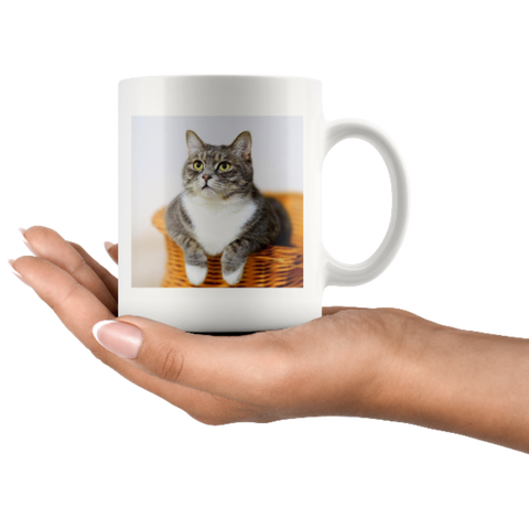 Image of personalized cat mug - Cute Cats Store
