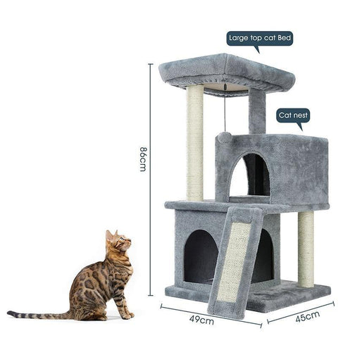 Image of kitten furniture - Cute Cats Store