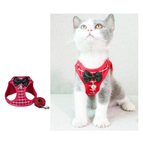 Image of cat vest and leash - Cute Cats Store